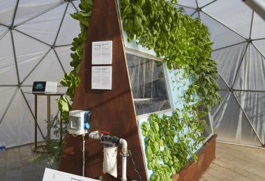 الزراعة المائيّة النباتيّة الحيوانيّة، إطار شكل حرف A وقبة جيوديسيّة خضراء، 2019